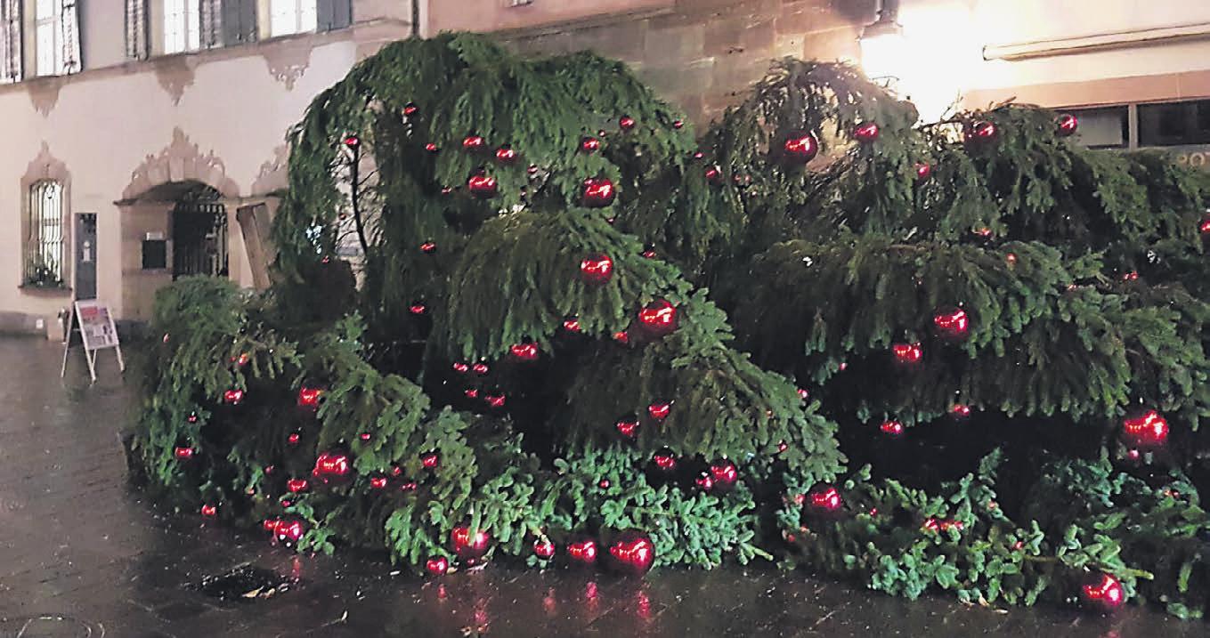 Bis Wann Bleibt Der Weihnachtsbaum Stehen.Neue Fricktaler Zeitung Kosten Für Weihnachtsbaum Werden Heftig